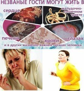 kakie-priznaki-glistov-u-cheloveka-i-lechenie